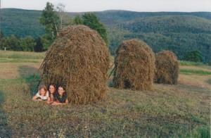 3haystacks